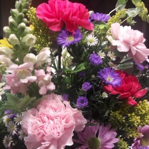 #flowers, #pretty, #beautiful, #lovely, #love, Greg McCravy, Gregory McCravy, Sandra McCravy, Sandra Brooks McCravy, Sandi McCravy, Derek McCravy, Derrick McCravy, Jonathan McCravy, Johnathan McCravy